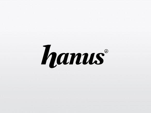 ts_portfolio_hanus1